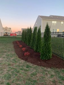 landscape_mulch_edging